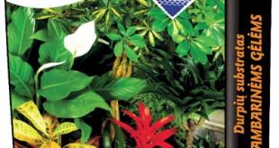 Υπόστρωμα τύρφης για φυτά εσωτερικού χώρου